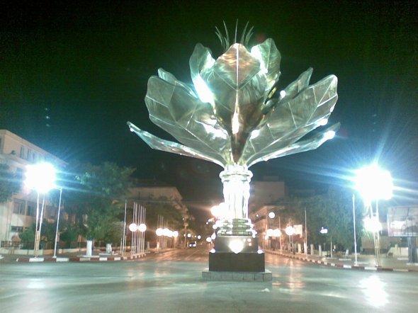 lotus de setif