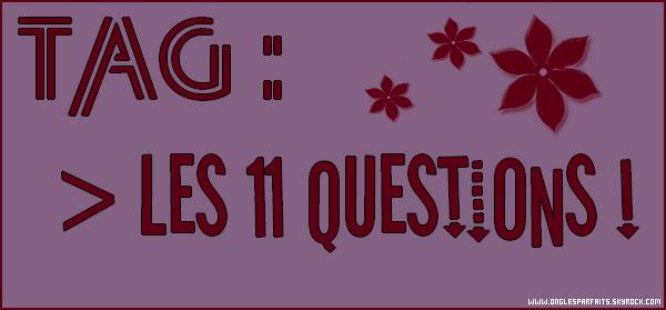 #. TAG > Les 11 commandements... EUH.. Les 11 questions !