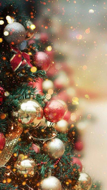 → Top 10 Décembre ←