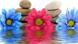Spa Benefits, Body Massage Jaipur, Best Spa in Jaipur