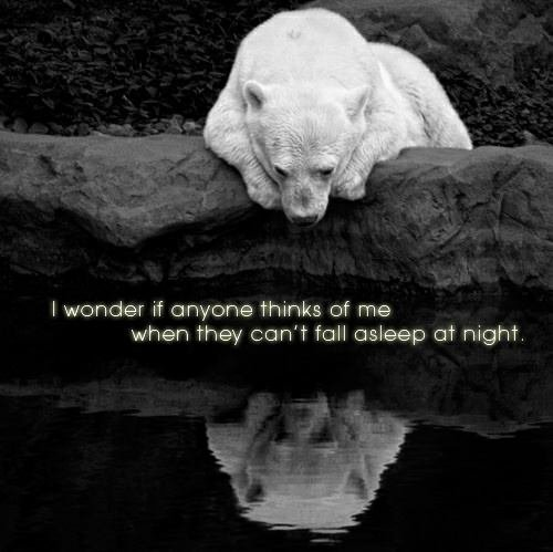 I always wonder ...