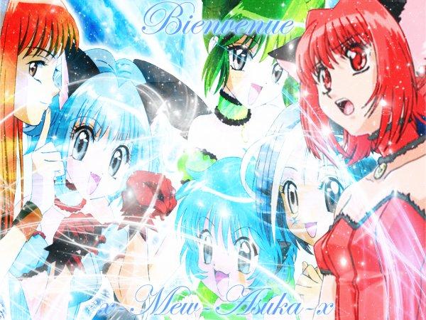 Bienvenu dans le monde d'Asuka