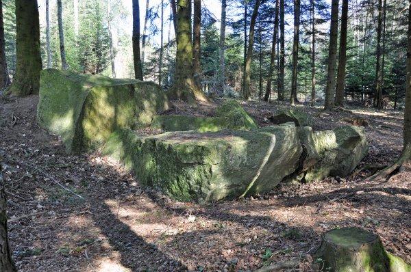 Menhirs, Dolmen et  Pierres à énergie tellurique de Suisse Romande (lieux sacrés)