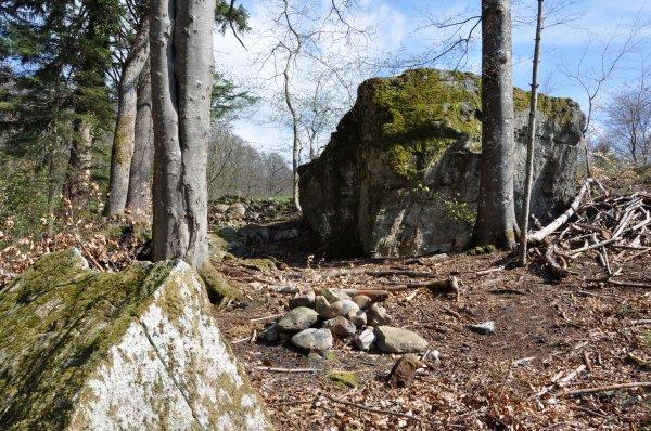 Menhirs, Dolmen et Pierres à énergie tellurique de Suisse Romande (lieux sacrés) (4)