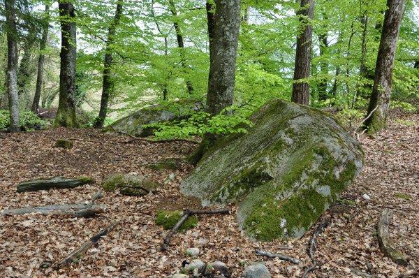 Menhirs, Dolmen et Pierres à énergie tellurique de Suisse Romande (lieux sacrés) (5)