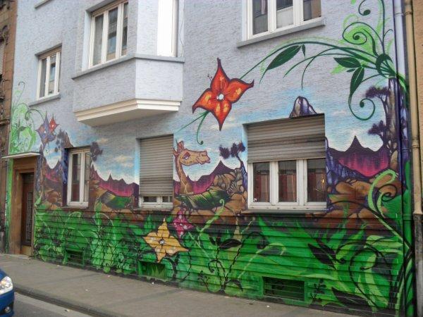 House Saarbrücken