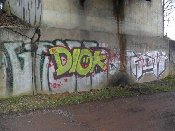 DIOK AHOK