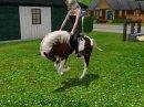 Photo de Sims3-Chevaux-x3