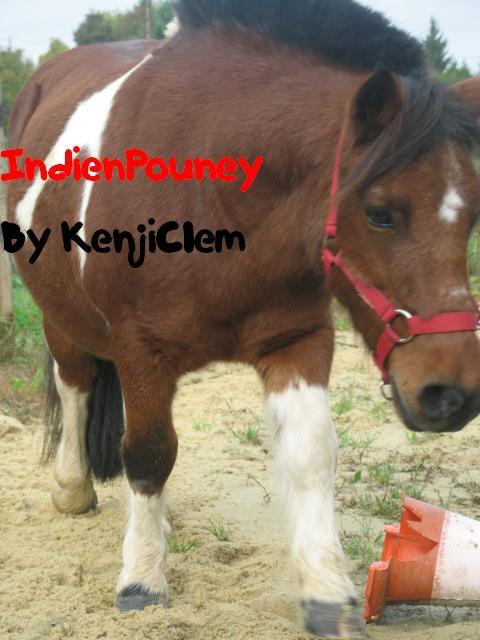 Premiere partie de la journée avec IndienPouney (Quand je met : IndienPouney By KenjiClem, C'est elle qui monte et c'est moi qui ai pris la photo, et quand y'a marqué : KenjiClem By IndienPouney, c'est moi qui monte et c'est elle qui a pris la photo !)