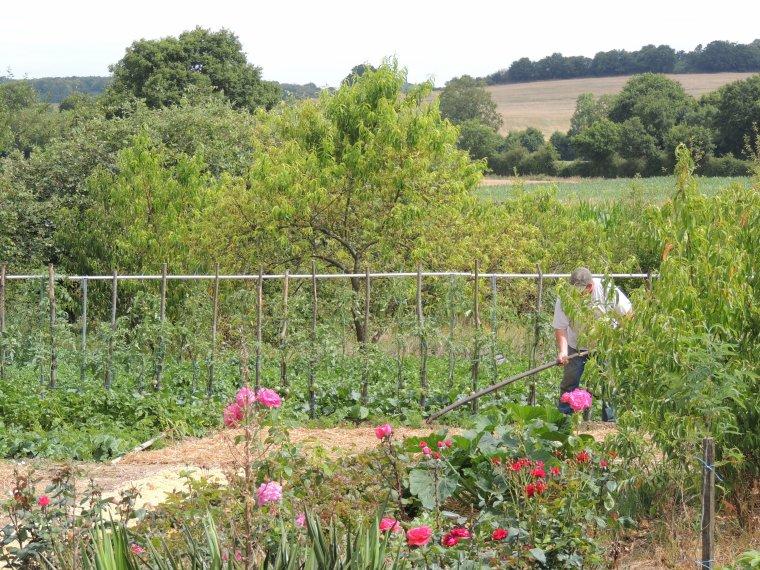 le jardin de mon mari