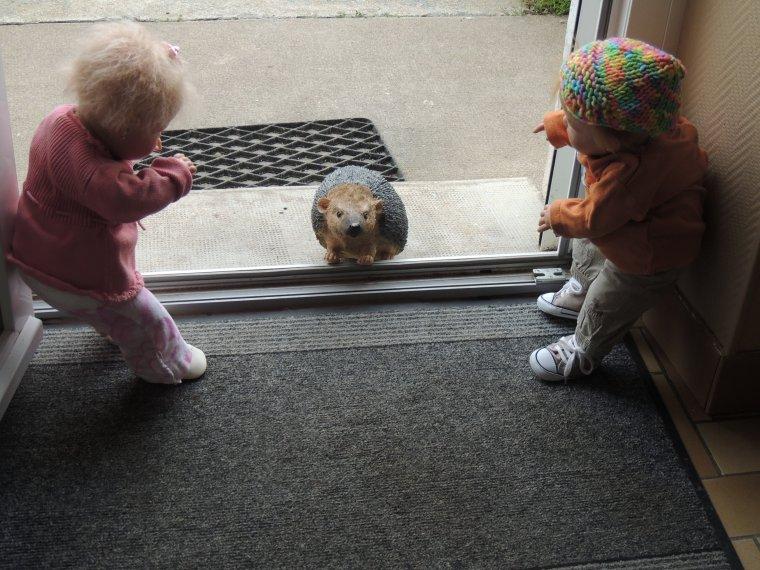 maman , maman le hérisson veut rentrer dans la maison