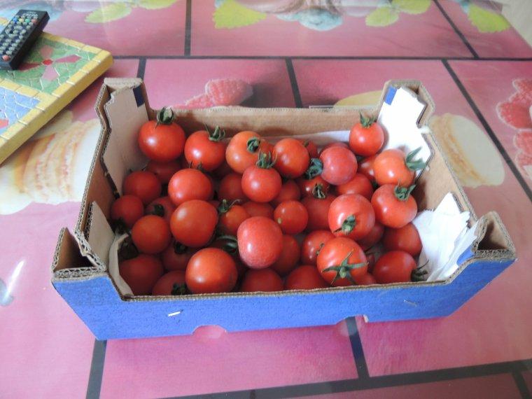 les premiers legumes tomates et haricots verts .on a aussi les courgettes