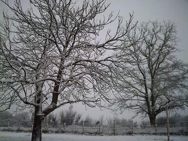 neige chez nous hier