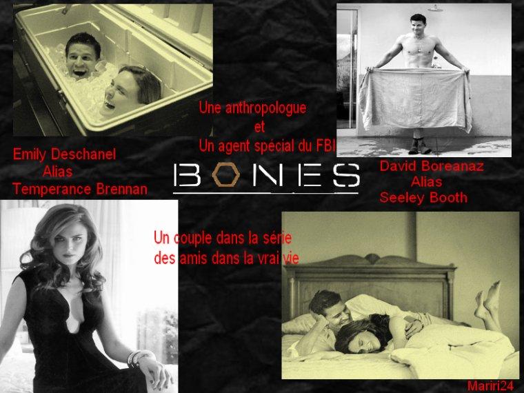 Montage pour le concours de bonesworld1