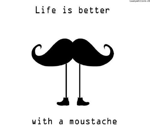 La vie est mieux avec une moustache. :{D