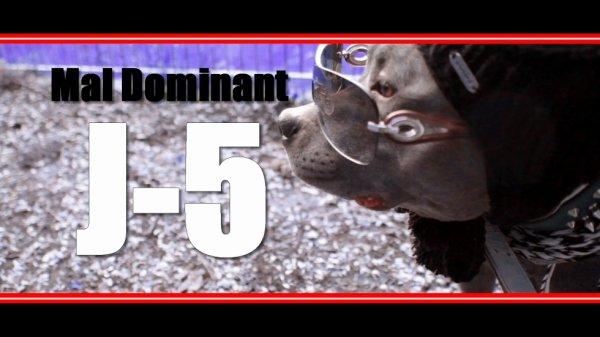 clip mal dominant J-5