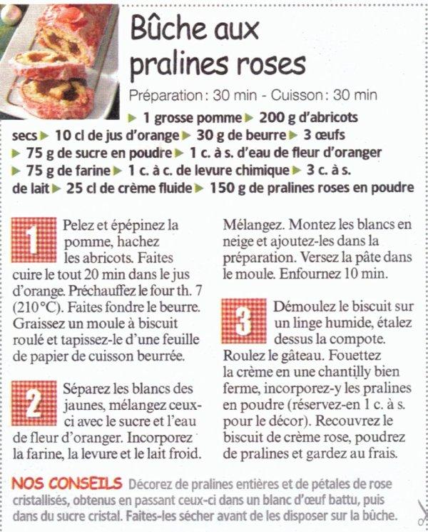 buche aux pralines roses