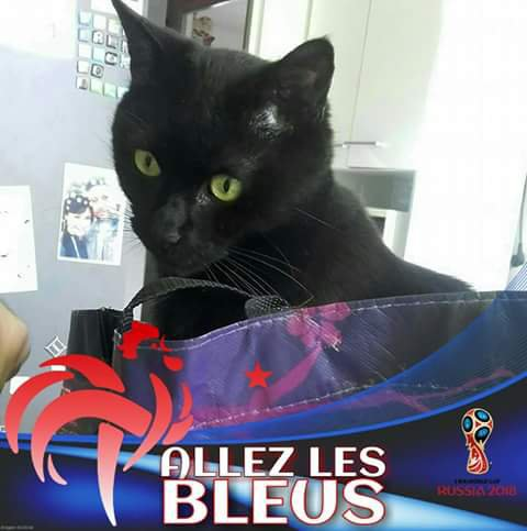 Mon bb Ne-Yo & moi on supporte l'équipe de France