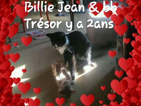 2de mes amours Billie Jean & Trésor 😻😻