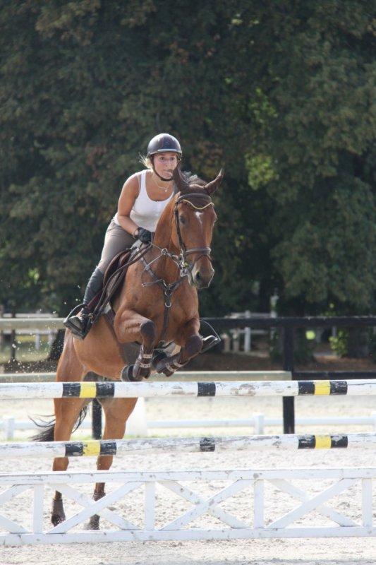 Très forte ce poney ! Cours du 20 août