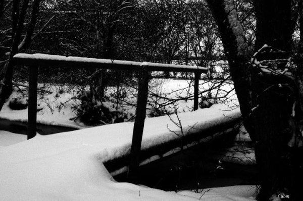 « Le malheur peut être un pont vers le bonheur. »