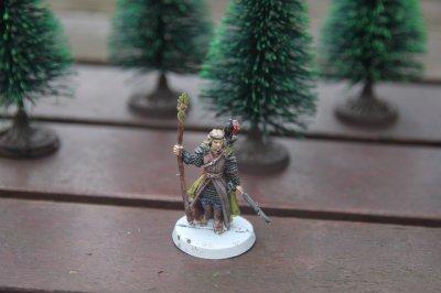 Mes figurines du jeu de bataille seigneur des anneau:Thranduil,roi de Mirkwood