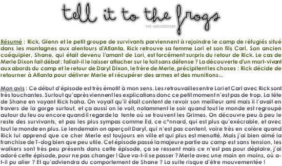 TELL IT TO THE FROGS | les grenouilles _