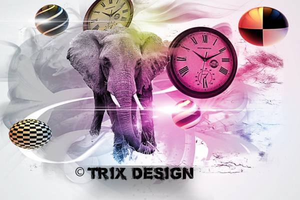 Triix Design
