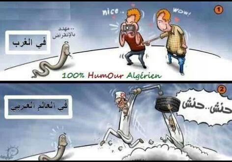 يا العرب