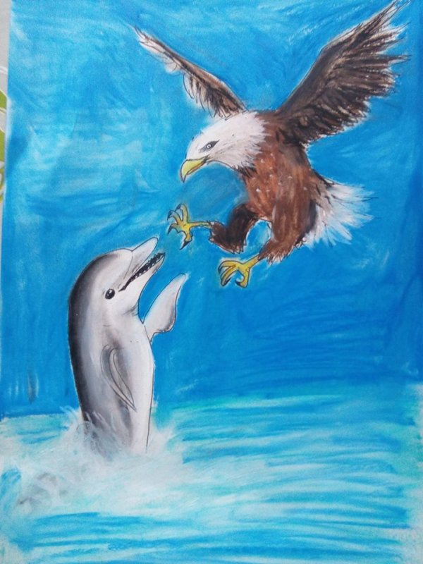 dauphin vs aigle