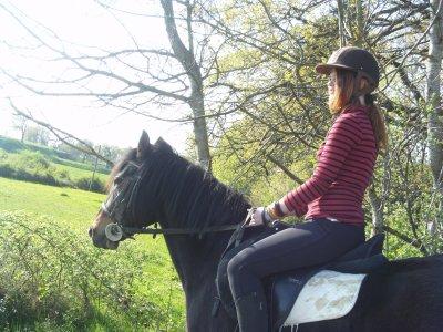 Mon Quatrième article, C'est Pour Dadjo, un cheval extraordinaire =') ♥