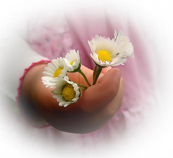 magnifique petite fleur de la part d'un petit ange mimi