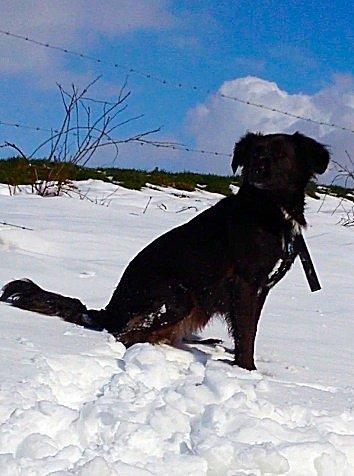 Ma fille sous la neige