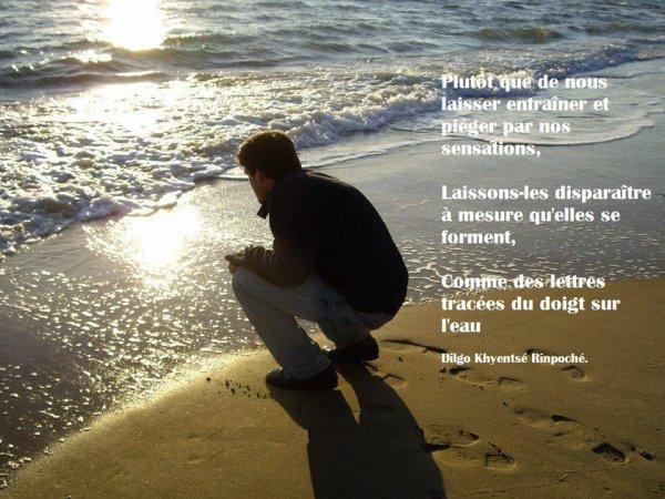 Les mots en suspension. . .  Poème - C♥eurSénégal22