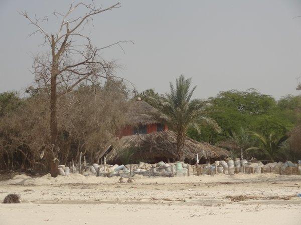 Amour - Amitié  - Texte C♥eurSénégal22  - Langue de Barbarie St Louis -  Sénégal nord