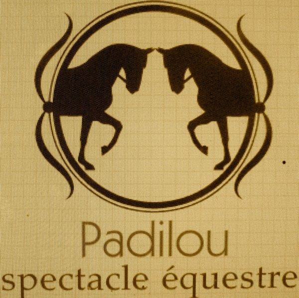 Padilou spectacle équestre ma ponette et mon cheval