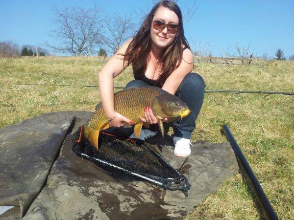 comune 8.5 kg jolie beau poisson