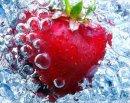 Photo de fraise-blanche