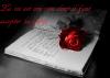 La vie est une rose dont il faut accepter les épines