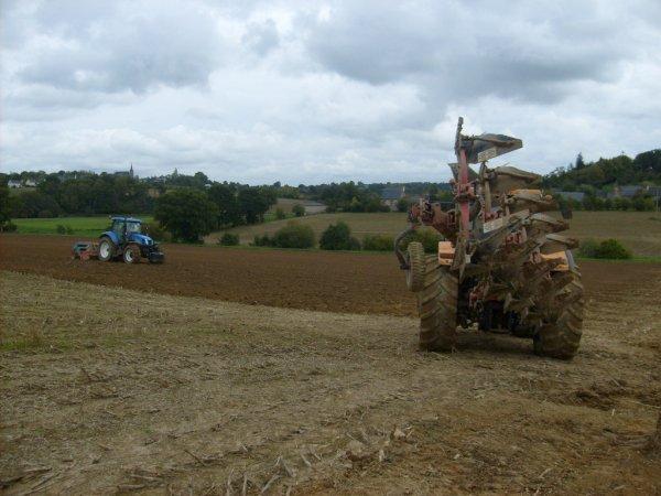 Labour , semi de blé 2010