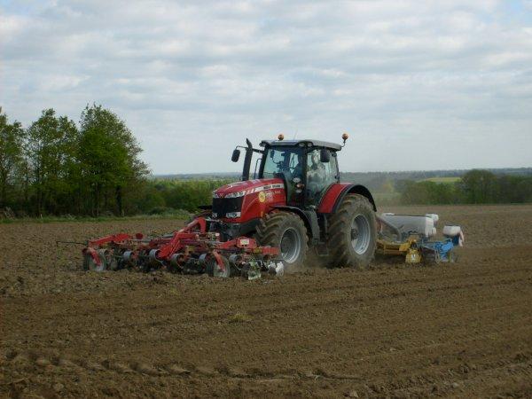 Semi de maïs 2010