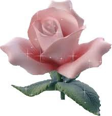 Hommage à la rose
