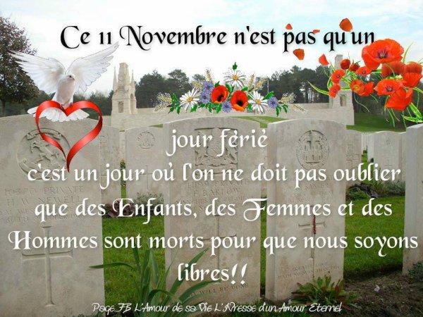 ne les oublions pas pensee pour toute ces victimes des deux guerre en ce jour du 11 novembre