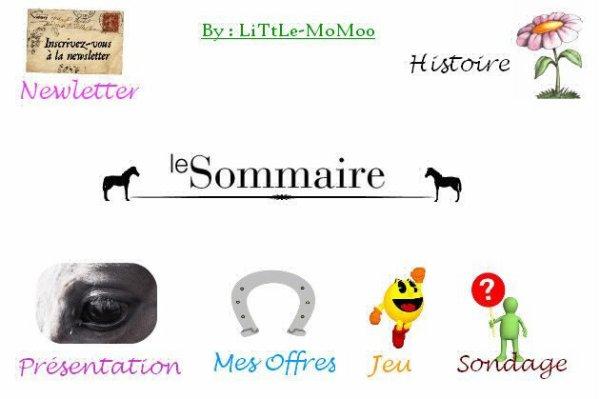 Présentation & Sommaire / Bonne visite!