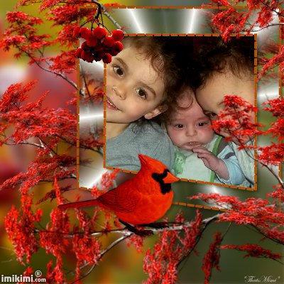 (l) les enfants de ma belle soeur gigi (l)