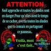 pour noel