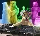 DJ CRASH_Officiel