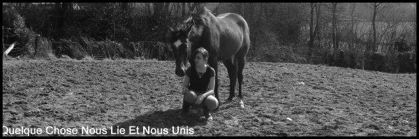 Quand un cheval est dans le coin le bonheur n'est pas bien loin !