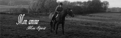 Le cheval séduit la gente féminine !