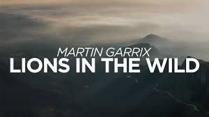 """Martin Garrix dévoile son nouveau titre : """"Lions In The Wild"""""""